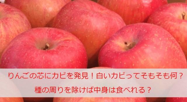 りんごの芯にカビを発見!白いカビってそもそも何?種の周りを除けば中身は食べれる?