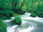 青森県の秘境 一度は行きたい!大自然満喫!「奥入瀬渓流」!