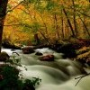 滝と紅葉が美しく調和する青森県十和田市の「奥入瀬渓流」で紅葉を楽しもう!
