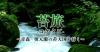 本上まなみが出演する番組「苔旅-コケタビ- ~青森・奥入瀬の苔天国を行く~」
