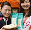 JAL 青天の霹靂 (青森米の新種) を都内でPR 12月からラウンジで登場する!