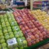 青森県産「極上リンゴ」 輸出 早くも年間輸出3万トン突破!(15年度実績)