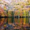 2017 十和田市奥瀬「蔦七沼の紅葉」見頃!⦅10月中旬~下旬⦆