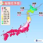 ウェザーニュース「第8回桜開花予想」=青森・弘前公園は18日開花へ!