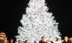 「函館の街を弘前色」に今年も「ひろさきナイト」開催!@2018/12/15