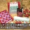 (青森県)ミニりんご 三戸から全国へ「MINIFUJI-CO」
