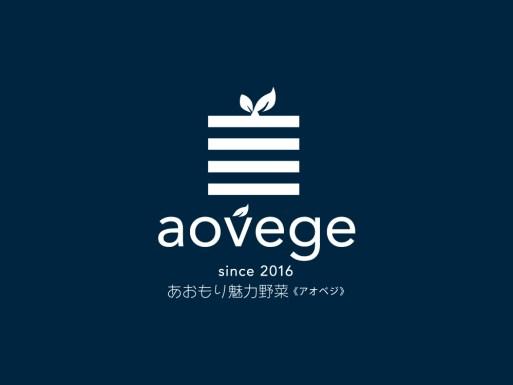 aovege-navy