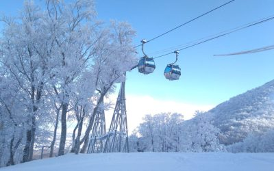 Still Time to Book your Japan Ski Holiday!