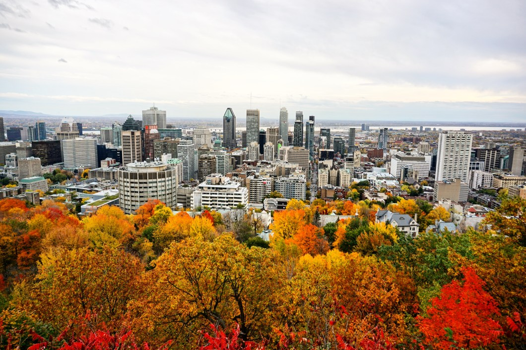 Best views in Montreal