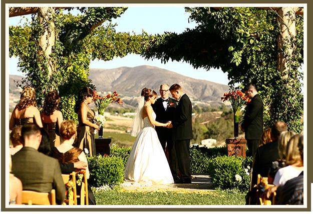 31 Days Of Weddings-Day 26: Vineyard Weddings