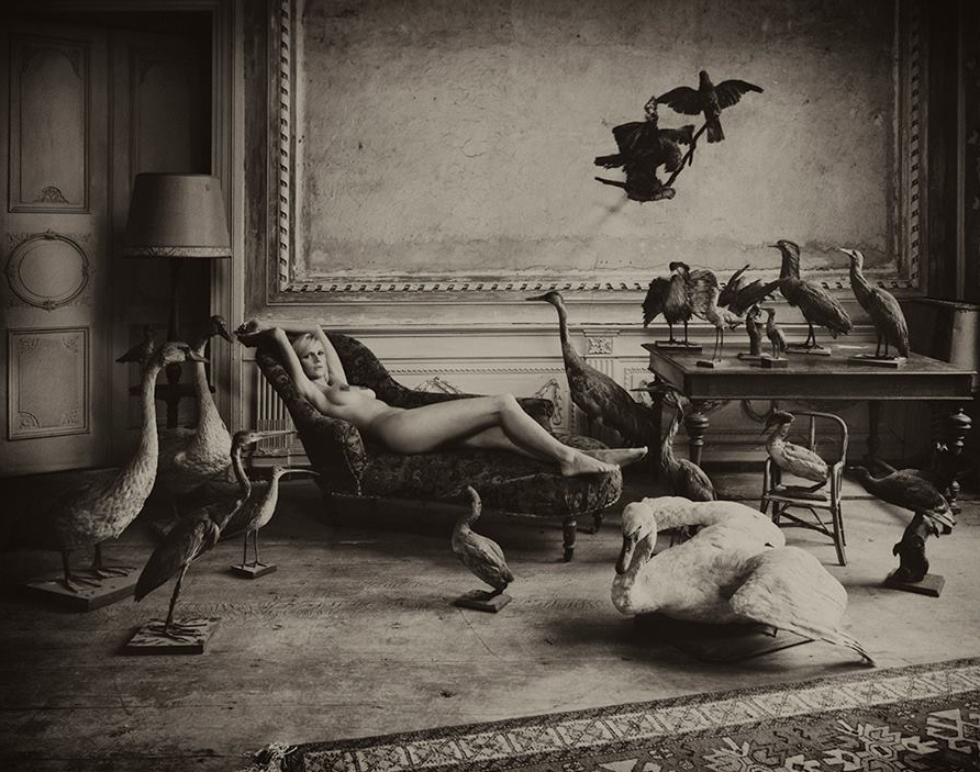 Subtile Hommage, Marc Lagrange, Art On Screen - NEWS - [AOS] Magazine