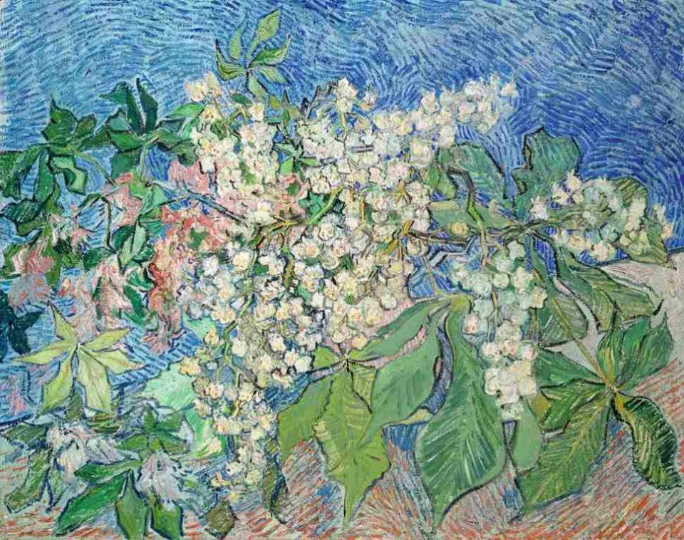 Vincent van Gogh, Blühende Kastanienzweige, Van Gogh Stillleben, Stillleben, Von Gogh Ausstellung, Museum Barberini