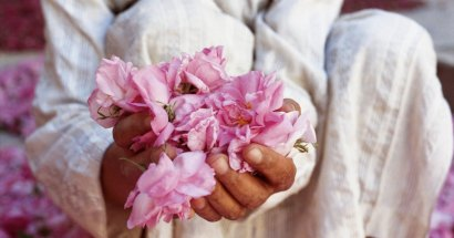 festa das rosas do marrocos