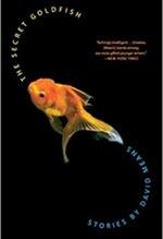 David Means, The Secret Goldfish
