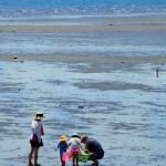 潮干狩りを子供と楽しむ為の子供の年齢や注意することあれこれ。