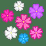 敬老の日に贈る花のおすすめはズバリこれ!手入れ不要の種類もある!