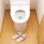 ムカデ生きたままトイレに流すとどうなる?ムカデは水に弱いの平気なの?