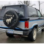 Realrides Of Wny 1985 Ford Bronco Ii