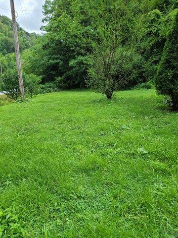 Yard featured at 169 Doe Branch Rd, Haysi, VA 24256