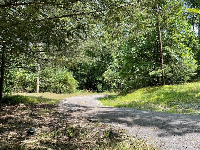 Road view featured at 111 Daffodil Ct, Pineville, WV 24874