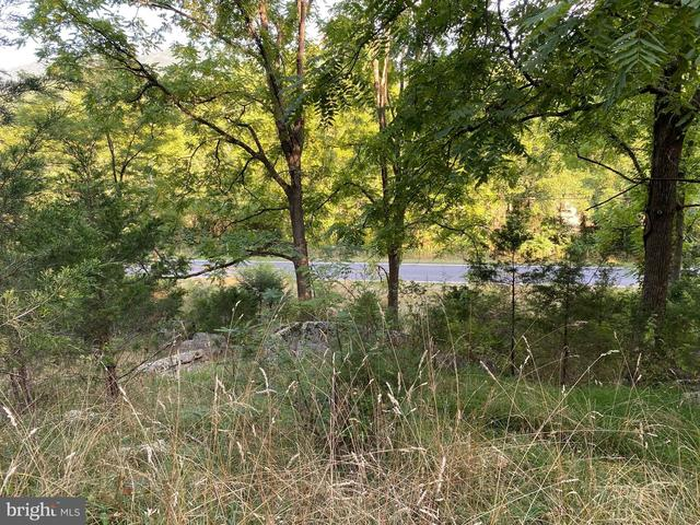 Farm land featured at 20728 S Fork Rd, Moorefield, WV 26838