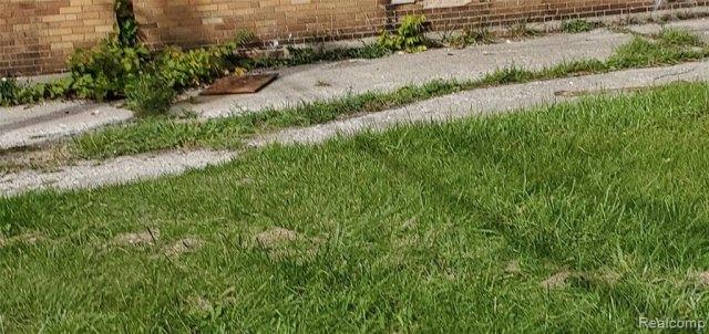Yard featured at 2749 Elmhurst St, Detroit, MI 48206