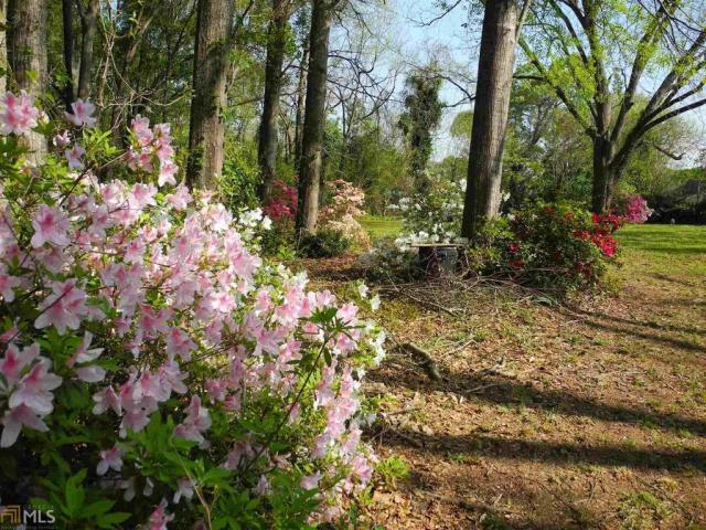 Farm land featured at 184 Cato St, Manchester, GA 31816