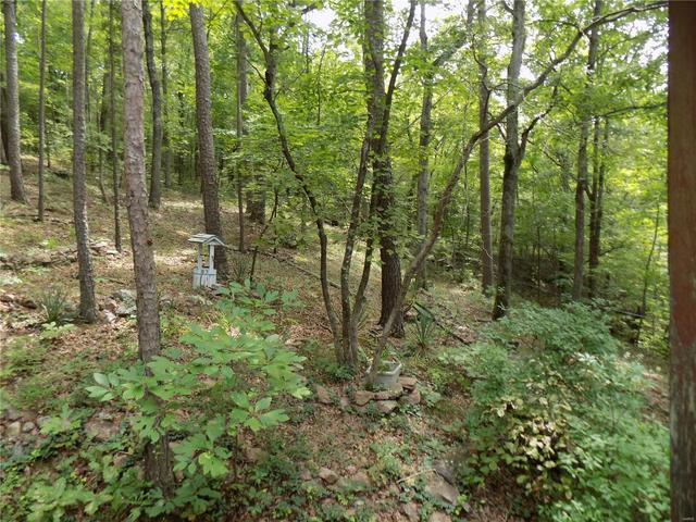 Farm land featured at 417 Rogers Ln, Ironton, MO 63650