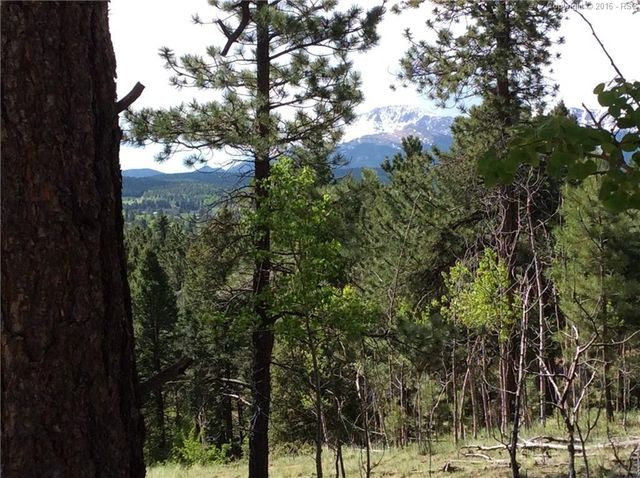 198 And 218 Summit Rd, Woodland Park, CO 80863