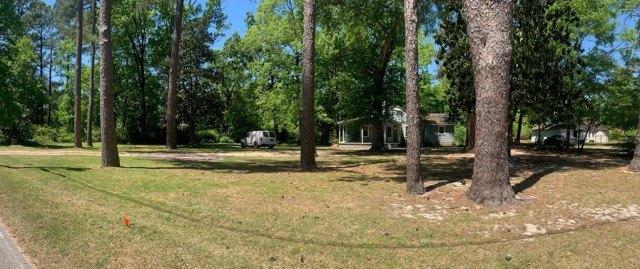 Yard featured at 121 Park Ave, Olanta, SC 29114