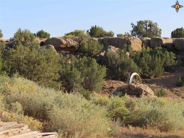 Farm land featured at 125 Cubero Loop, Grants, NM 87014
