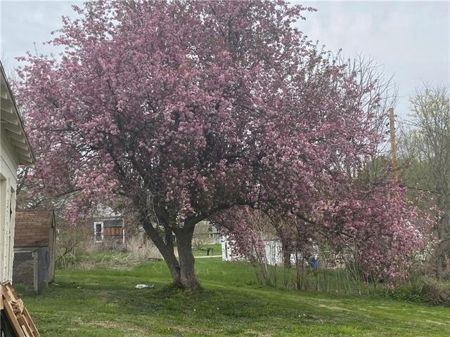 Farm land featured at 403 W Pine St, Oregon, MO 64473