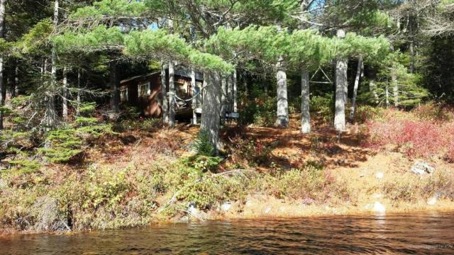 Yard featured at Marks Lake Rd, Marshfield, ME 04654