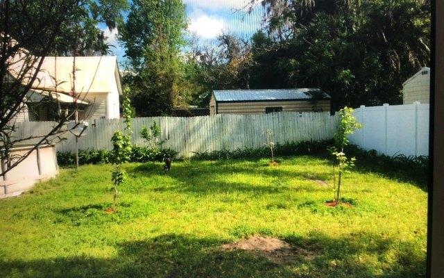 Yard featured at 201 2nd St NE, Live Oak, FL 32064