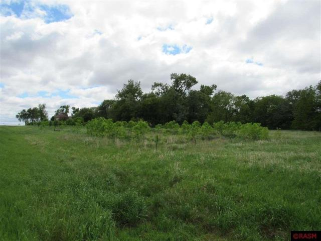 Farm land featured at 14089 430th Ave, Blue Earth, MN 56013