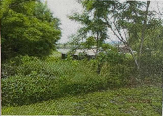 Farm land featured at 228 Ridge St, South Shore, KY 41175