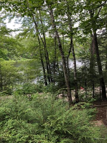 Farm land featured at 1255 Old Waterford Rd, Lovell, ME 04051