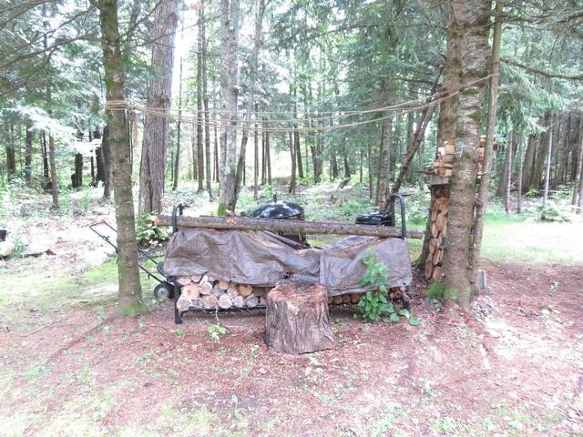 Farm land featured at 945 Margaret Lake Rd, Three Lakes, WI 54562
