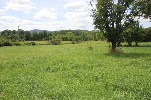 Farm land featured at 2132 State Route 165, Seward, NY 12043