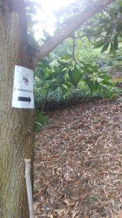 Papan tanda permulaan Mosquito Hill