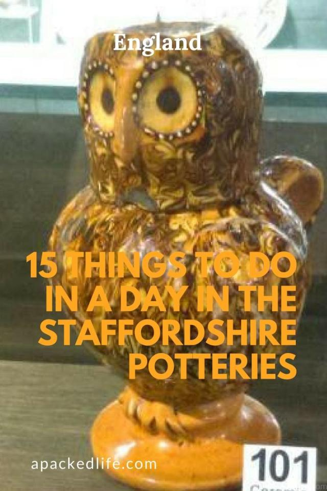 15 Things To Do In A Day In The Staffordshire Potteries - Meet Ollie The Owl at the Potteries Museum and Art Gallery