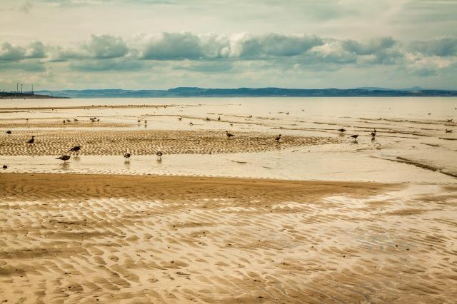 Best Beaches In Scotland: Portobello, Edinburgh