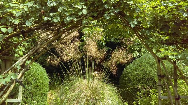 A Feast For The Senses: The National Herb Centre, Warwickshire - Demonstration Garden