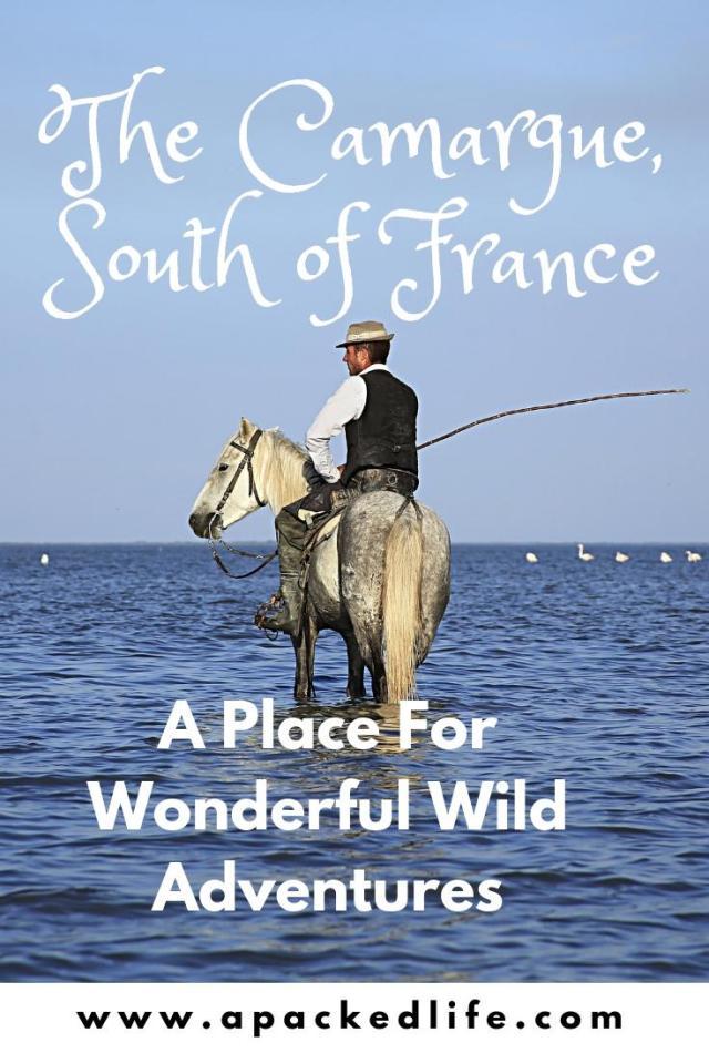 13 Wonderful Adventures In The Wild Camargue