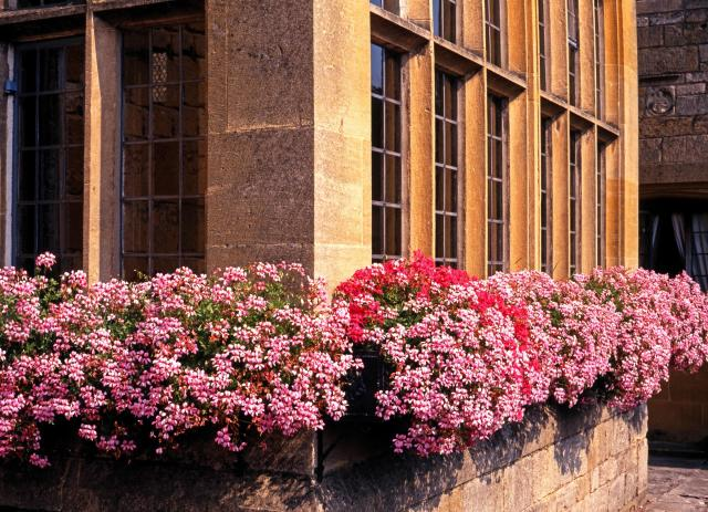 Broadway Cotswolds - Window Boxes, High Street