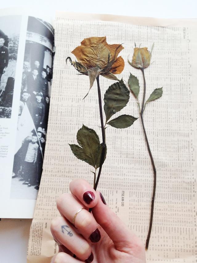 How To Press Botanicals A Pair Amp A Spare