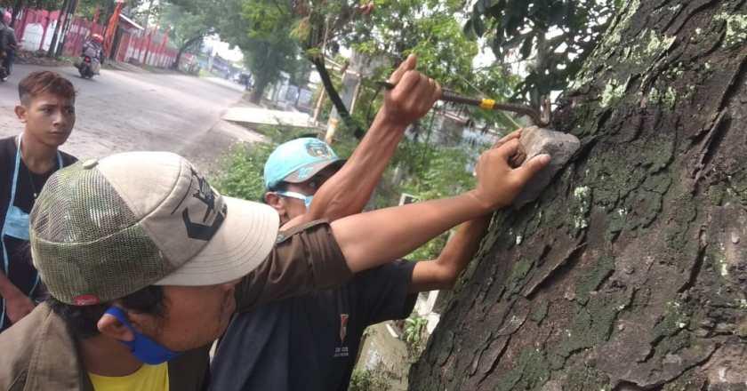 Hari Pohon Sedunia, Turunkan Spanduk dan Cabuti Paku