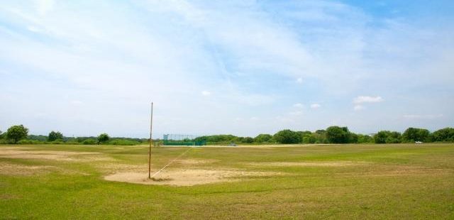 高校野球場
