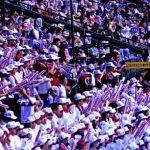 広島新庄野球部 2016メンバーの出身中学や注目選手は?