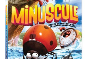 Minuscule: Valley of the Lost Ants DVD Giveaway